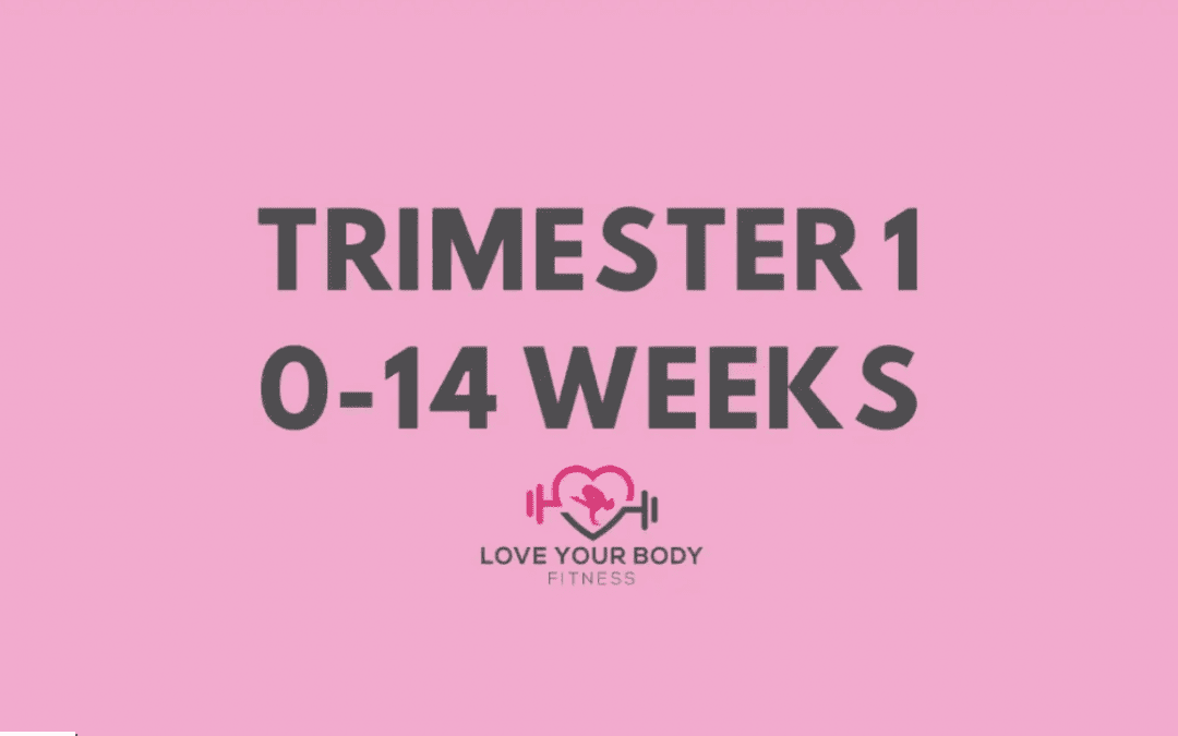 Trimester 1: 0-14 Weeks